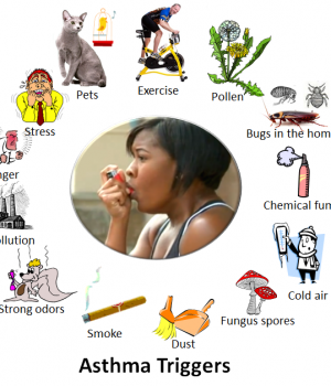 Asthma_triggers_2-300×350